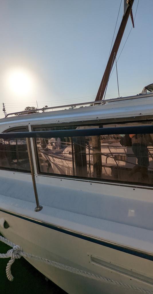 Bonehead Blunders