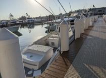 Mercury Marine 4.5L-V-6 sterndrive-engine-