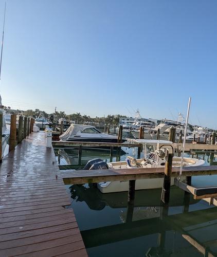 Dog-Boating-Tips